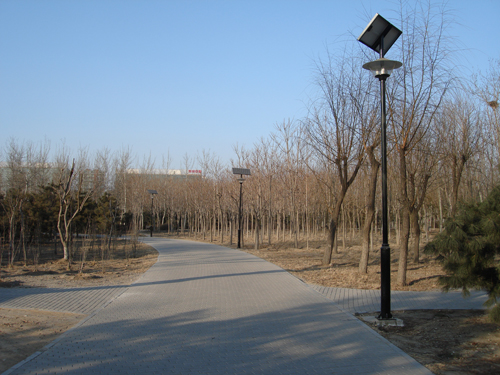 Solar powered lights in a park in Beijing - but something is wrong with this picture